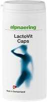 LACTOVIT CAPS